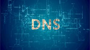 Услуга поддержки DNS